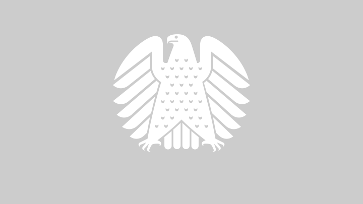 The Bundestag eagle in the plenary chamber