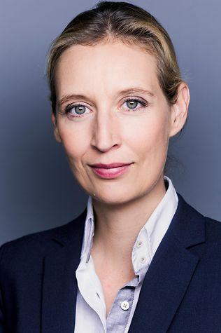 Alice Weidel Vermögen